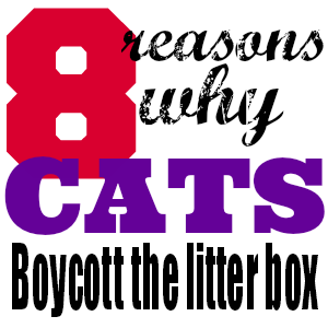 The most common cause of cat toilet problems – and fortunately, most easily fixed – is the litter box itself. Here's a quick checklist of potential litter box issues that could very well be the heart of the problem.