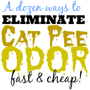 cat-pee-odor