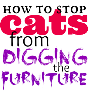 If your cat has ever reduced your upholstery to fringe, you know the galactic-level frustration of coping with a furniture-digging feline. Here are some ways to stop 'em.